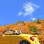 行政書士による和歌山県の車庫証明日記 和歌山運輸支局へ